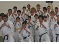 Enshin Karate - logo